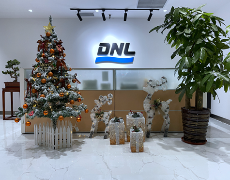 DNL Group wishes you Merry Christmas and Happy New Year!